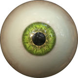 Eye iris Royalty Free Stock Photo