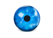 Eye iris. Blue 3D eye iris isolated Royalty Free Stock Photography