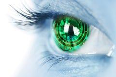 Eye iris and electronic circuit. Eye iris and green  electronic circuit Stock Photography