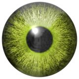 Eye iris generated hires texture. Or background Royalty Free Stock Photography