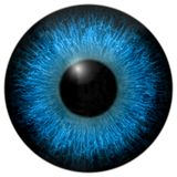 Eye iris generated hires texture Stock Image