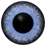 Eye iris generated Royalty Free Stock Photo