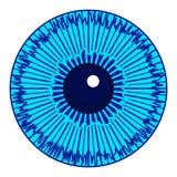 Eye iris icon Royalty Free Stock Image