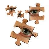 Eye jigsaws. Eye jigsaw pieces on white Royalty Free Stock Photos