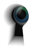 Eye in the keyhole. Blue eye in the keyhole on white Stock Photos