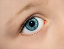 Eye of a kid. Close up of the green eye of a child Royalty Free Stock Photos