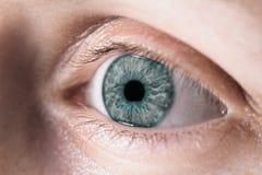 eye kvinnlign Royaltyfria Bilder