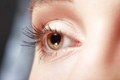 eye kvinnlign Arkivfoton