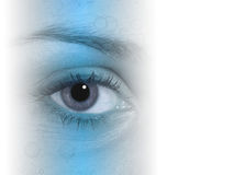 Eye l'estratto Fotografie Stock