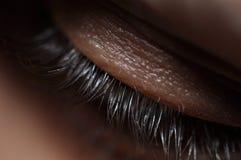 Eye Lashes Royalty Free Stock Photo