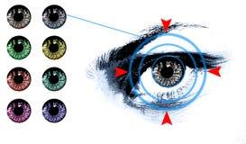 Eye lens shade chart Royalty Free Stock Photos