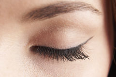 Eye lid. Close up of womans brown eye lid with false eye lashes stock photos