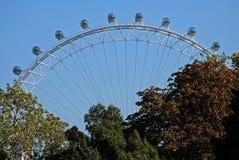 eye london Royaltyfri Bild