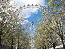 eye london Royaltyfria Bilder