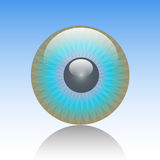 Eye-Look. Illustration of a blue eye on a blue background Stock Image