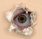 Eye look out from hole Royalty Free Stock Photos