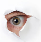 Eye looking through a hole Stock Photography