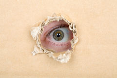 Eye looking from a hole in a cardboard Royalty Free Stock Photos
