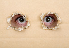 Eye looking from a holes in a cardboard Stock Image