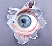 Eye looking through torn gap Stock Image