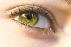 Eye macro. Green female eye close-up royalty free stock images