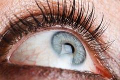 Eye macro Stock Photo