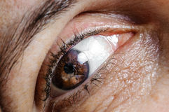 Eye macro adult woman Royalty Free Stock Photo