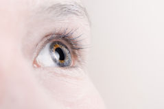 Eye Macro with Copy Space. Closeup of a woman's eye with lenty of copy space Royalty Free Stock Images