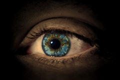 Eye 1 Royalty Free Stock Photo