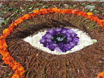 Eye made from flowers Stock Photos