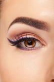 Eye with make up and long eyelashes in close up photo Royalty Free Stock Image