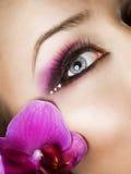 Eye Makeup. Beautiful Eye Makeup. Close-up Image Royalty Free Stock Photos