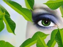 Eye makeup Royalty Free Stock Images