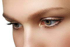 Eye makeup. Beautiful eyes make-up. Holiday makeup detail. Long Stock Images