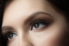 Eye Makeup. Closeup of beautiful woman eye with makeup, looking up Stock Image