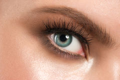 Eye makeup closeup Royalty Free Stock Photography