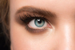 Eye makeup closeup Royalty Free Stock Photos