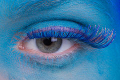 Eye Makeup Royalty Free Stock Image