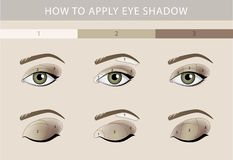 Eye Makeup Tutorial Eyeshadow Vector Template Stock Vector - Eyeshadow template