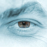 Eye of the man Royalty Free Stock Photo