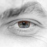 Eye of the man royalty free stock photos
