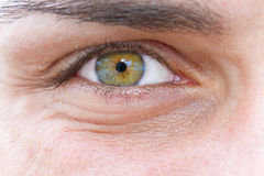 Eye of a man Stock Image