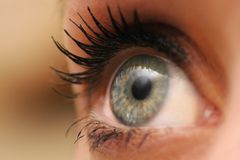 Eye mascara Royalty Free Stock Photography