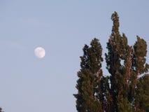 Eye on the Moon. Photo taken in Negotin, town near Danube, Eastern Serbia Royalty Free Stock Photography