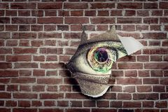 Eye in a hole of torn paper. Eye with multicolour iris watching from the hole of torn paper sheet with painted brick wall royalty free stock photos