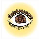 The eye of my garden Stock Image
