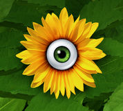 Eye On Nature Stock Photos
