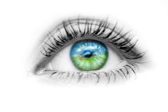 Eye with nature in the eyes. Image of the human eye with nature in the eyes