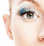 Eye and nose of beautiful young. Woman close up, soiled by green cosmetics Stock Photos