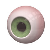 Eye Oculus Royalty Free Stock Photo